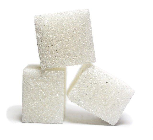 zuckerfrei Ernährungskurs